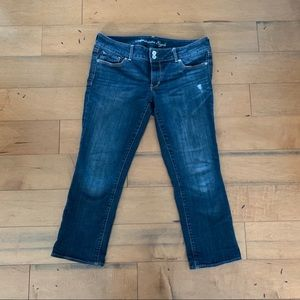 American Eagle Artist Crop Jeans size 12